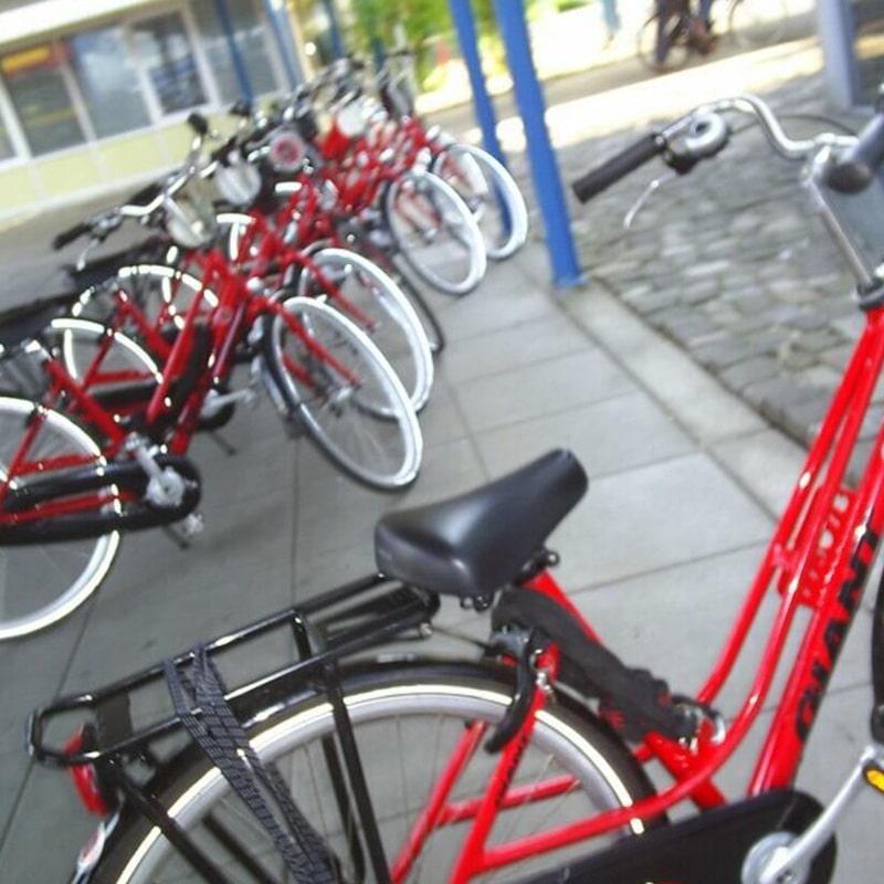 Culinaire fietstocht met lunch